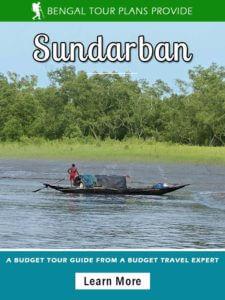 sundarban package tour from kolkata