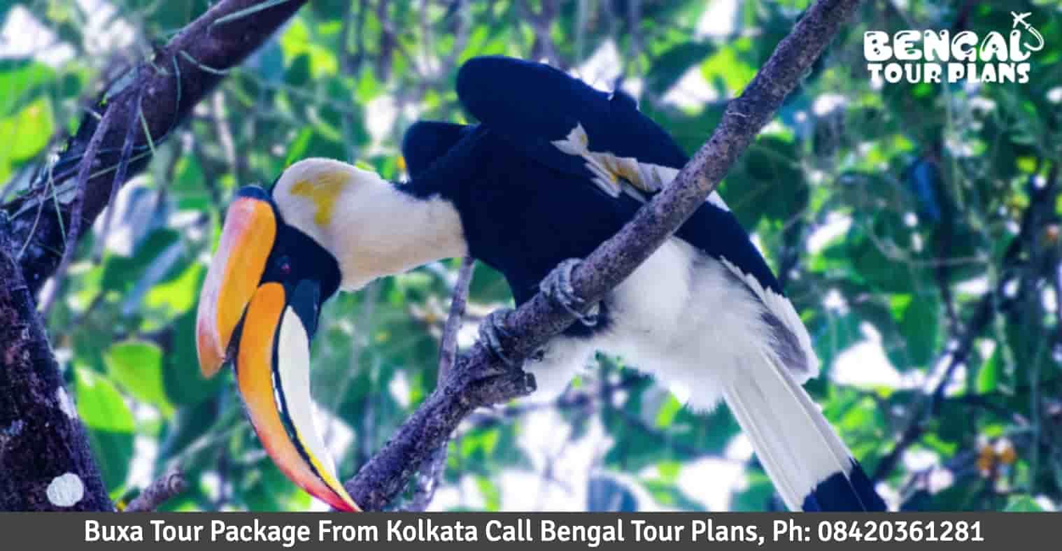 Buxa Tour Package From Kolkata