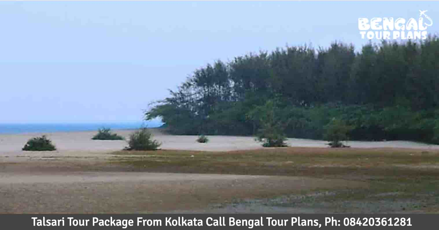 Talsari Tour Package From Kolkata