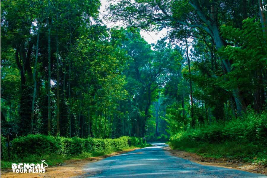 Vizag Araku Package Tour From Kolkata