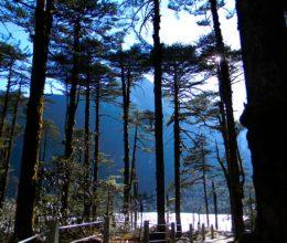 Arunachal Pradesh Package Tour